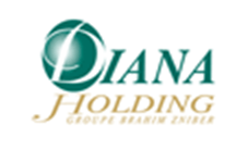 cabinet conseil logistique Diana Holding
